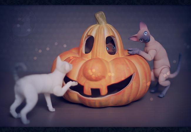 hide-n-pumpkin by Keila-the-fawncat