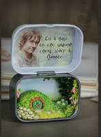 Hobbiton in the box by Keila-the-fawncat