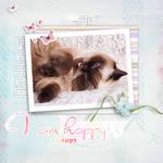 a happy April cat by Keila-the-fawncat