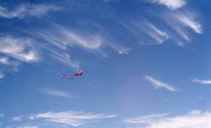 Kite Flying Stock
