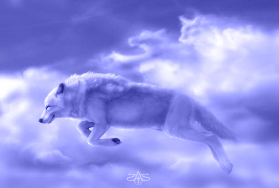 White Wolf By Kahlan Amnell 13
