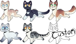 Realistic cat adopts -ON HOLD- by KamodoDraws030