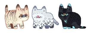 Spotted adopts -CLOSED-