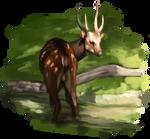 Day 10 Deer Thing