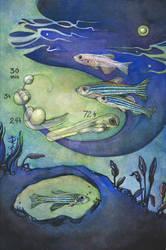 The Phylomon Project I: Zebrafish