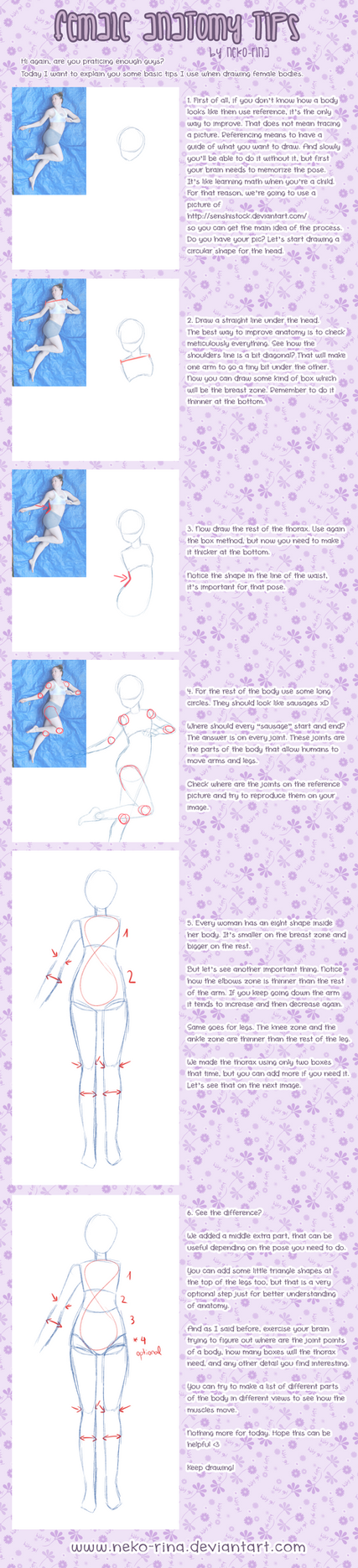 Female Anatomy Tips by Neko-Rina on DeviantArt