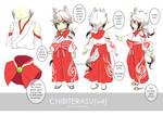 Chibiterasu-v4 Cosplay Guide