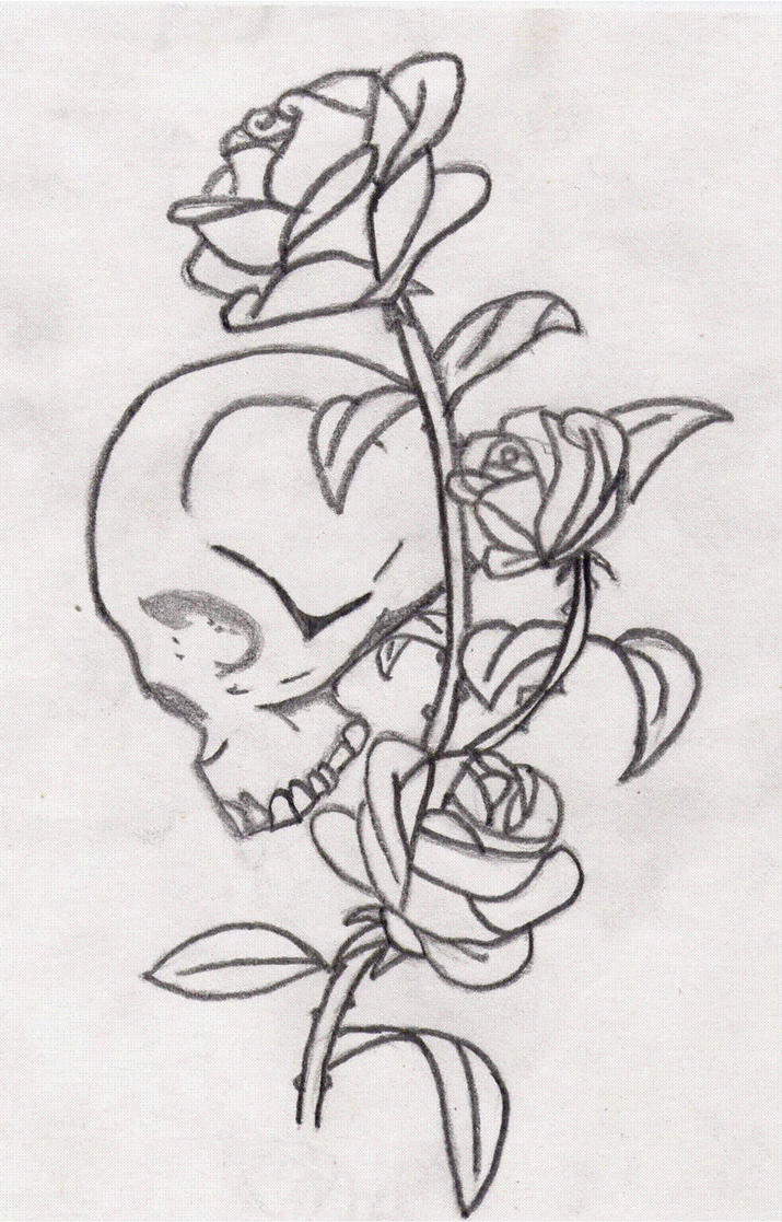 how to draw skulls and roses
