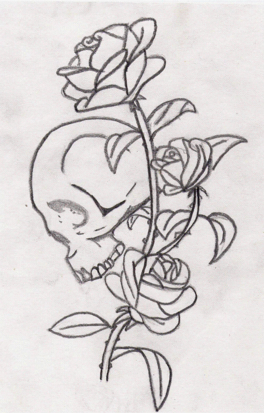 Skull Rose By Candy King On