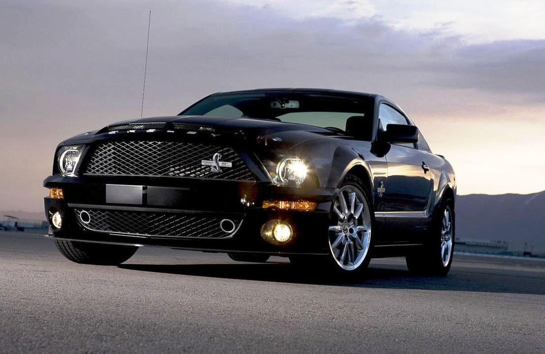 2014 ford shelby gt500 - 2014 Ford Shelby Gt500 By Thexrealxbanks