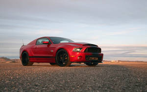 2014 Shelby GT500 Super Snake by ThexRealxBanks