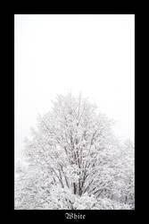 White by lotus82