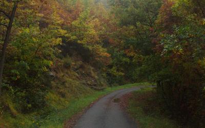 Autumn Colors by lotus82