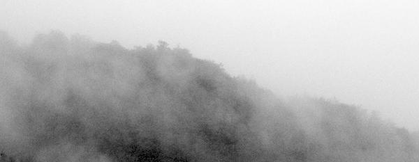 Fog by lotus82
