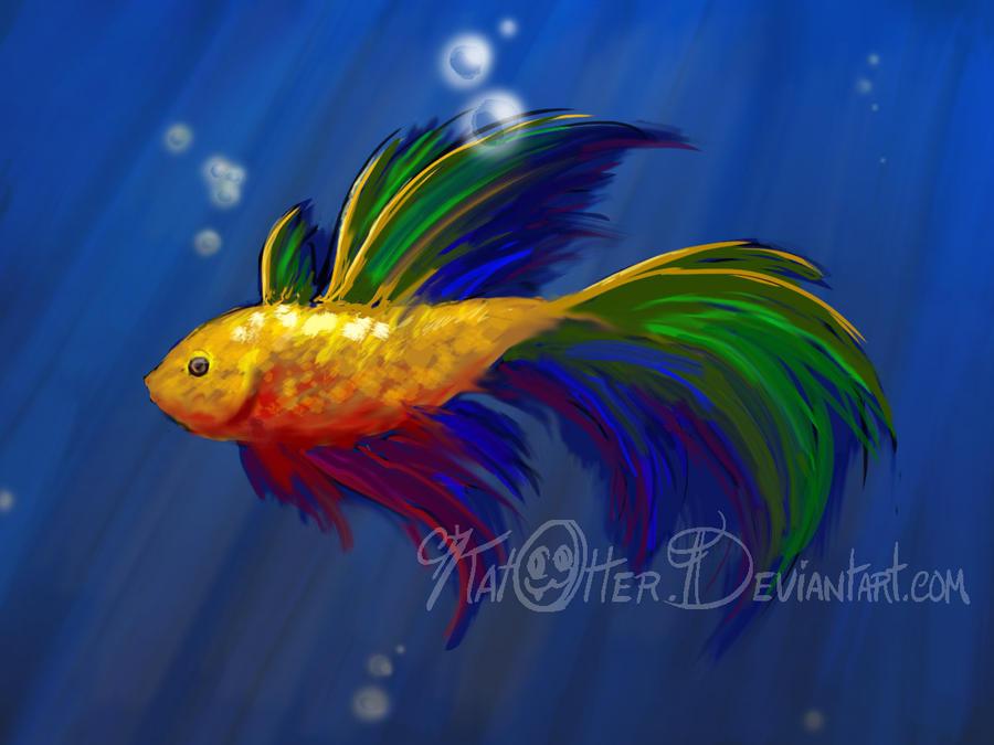 RAINBOW FISH SPECIES PICTURES