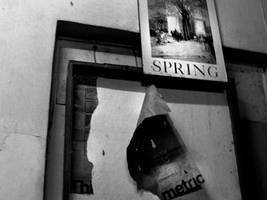 spring by spinmysugar