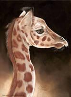 giraffe baby by Drehli