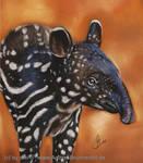 baby Tapir by Drehli