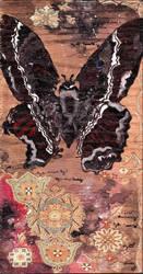 Black Moth by DoingTheUnstuck