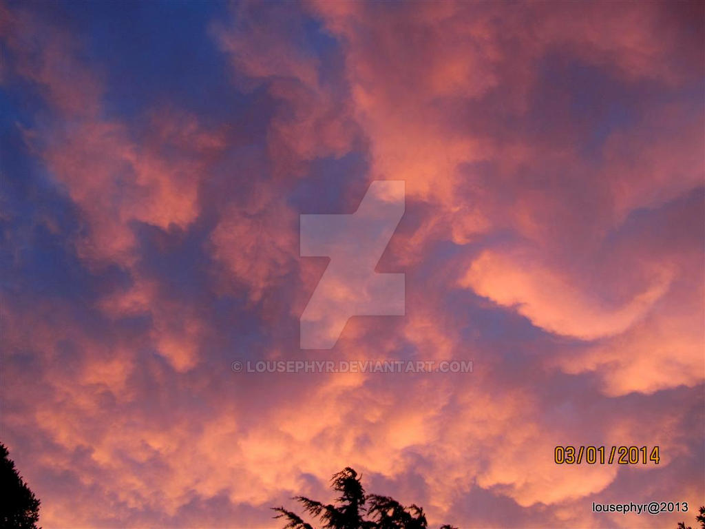 Storm Brewing by lousephyr