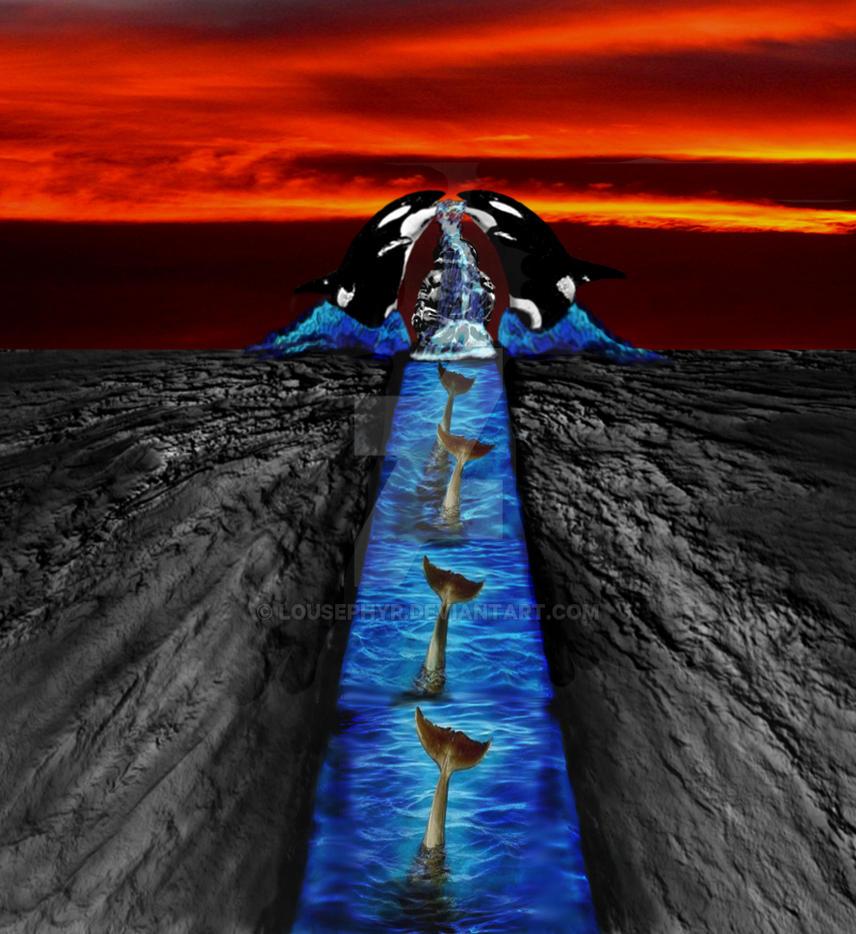 The Dolphin Temple by lousephyr