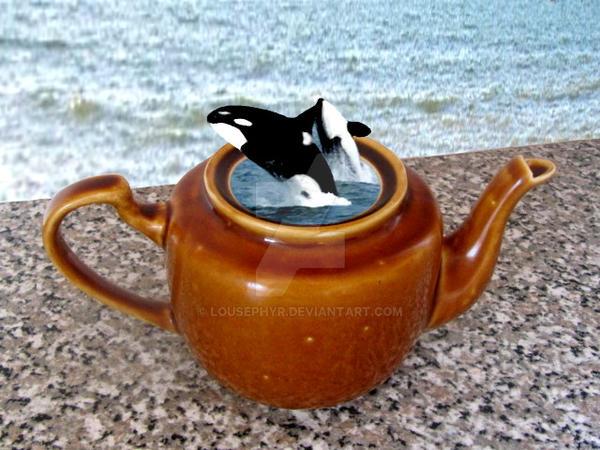 Orca Dance. by lousephyr