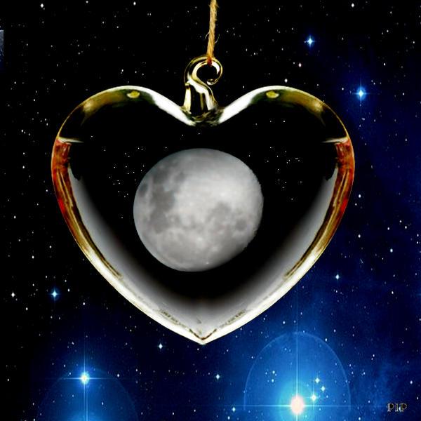 Honey-Moon..PipCamera by lousephyr