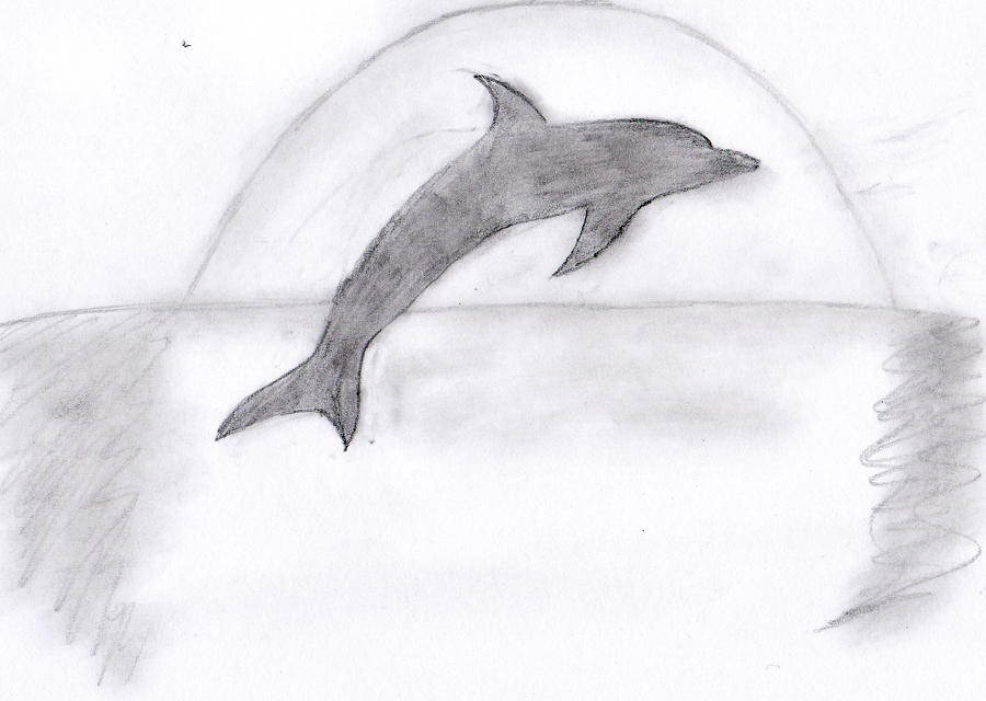 Pencil Drawings Of Dolphins | www.imgkid.com - The Image ...