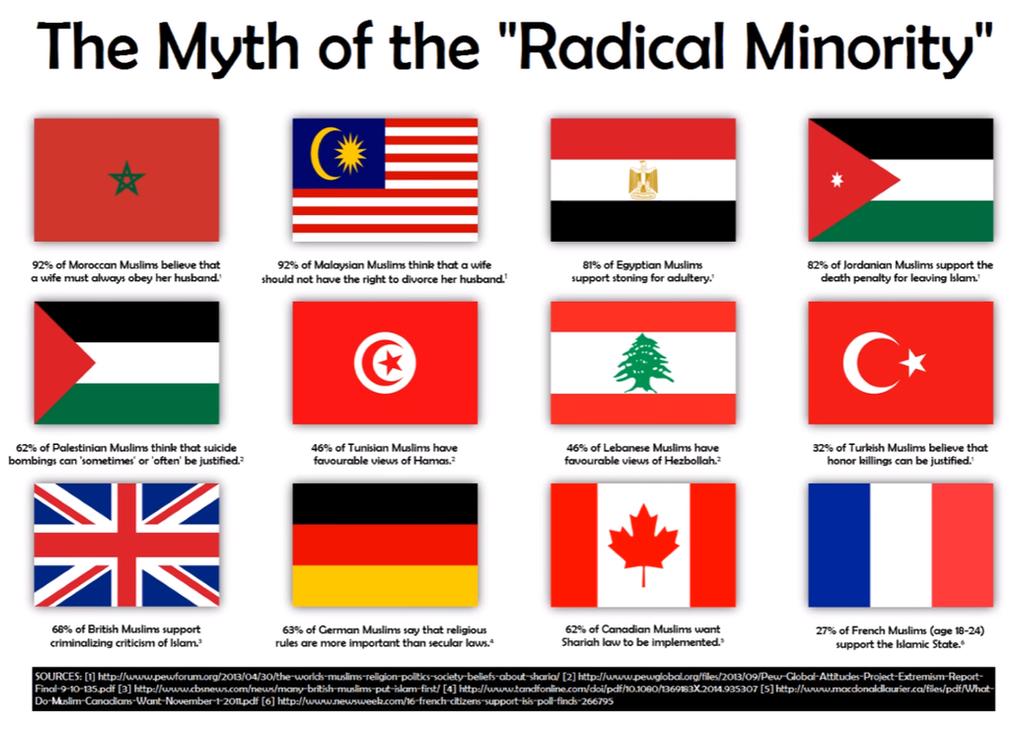 Radical Islam Is Not A Minority by Midnight-Fantom
