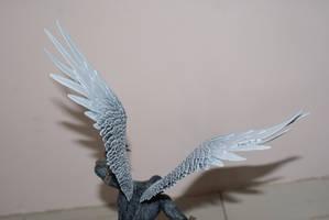 Wing Stock by kuskostock
