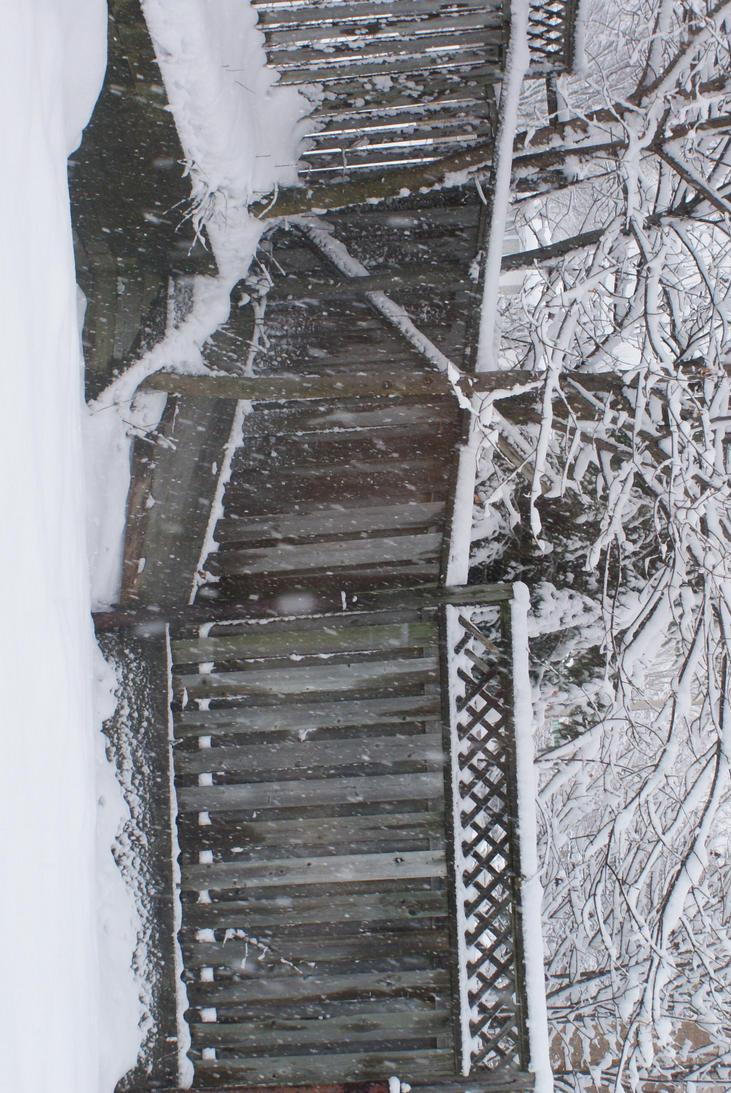 Winter_Stock_ by kuskostock