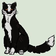 Thornclan's current leader - Badgerclaw/Badgerstar by WolfshadeofNightclan