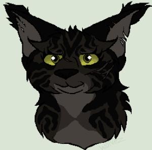 WolfshadeofNightclan's Profile Picture