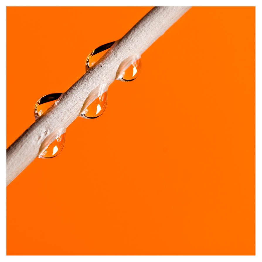 Water Macro V by neeth1um
