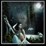 Midnight Falls by brutalbich