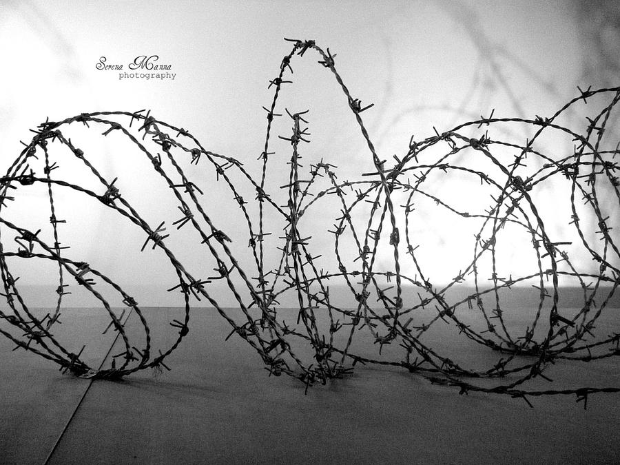 Barbed Wire by Starless10 on DeviantArt