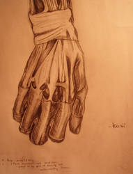 Anatomy Study : Hand
