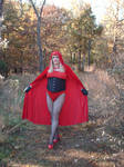 Red Riding Hood of The Fall Woods 6 by doctorderanged