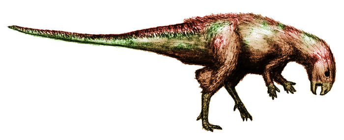 Kulindadromeus in color by theropod1