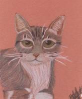 Martin Portrait on Brown by Lunareye