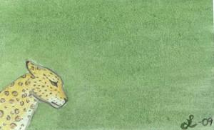 Bristol Jaguar by Lunareye