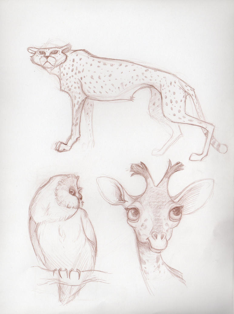 Animals by PodwojneD
