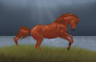 The Scorpio Races - Corr by AlbinoBlackbird