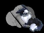 OG Steel/Dark Eevee