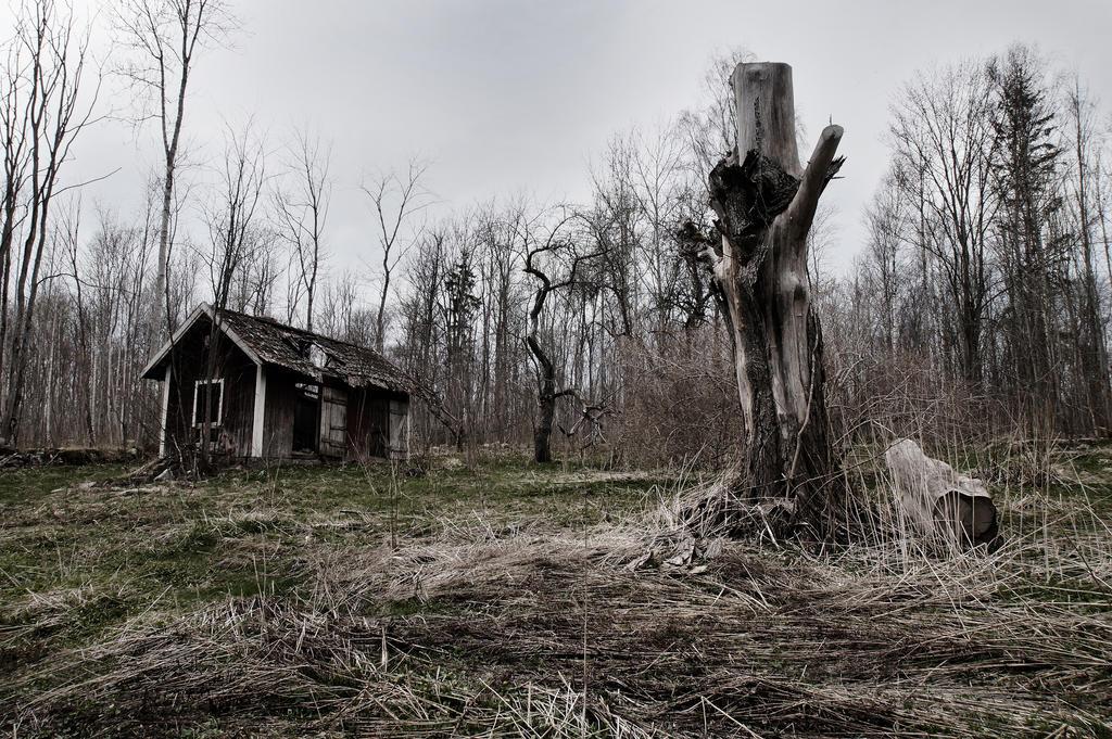 Download slender woods windows 7