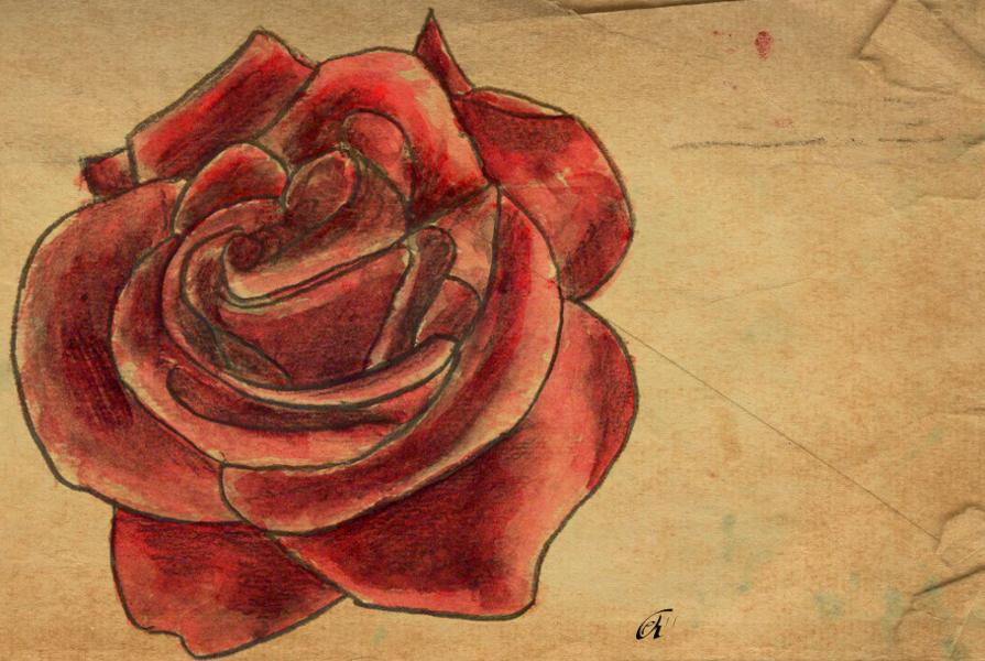 Watercolor Taboo Rose by ElizAarons