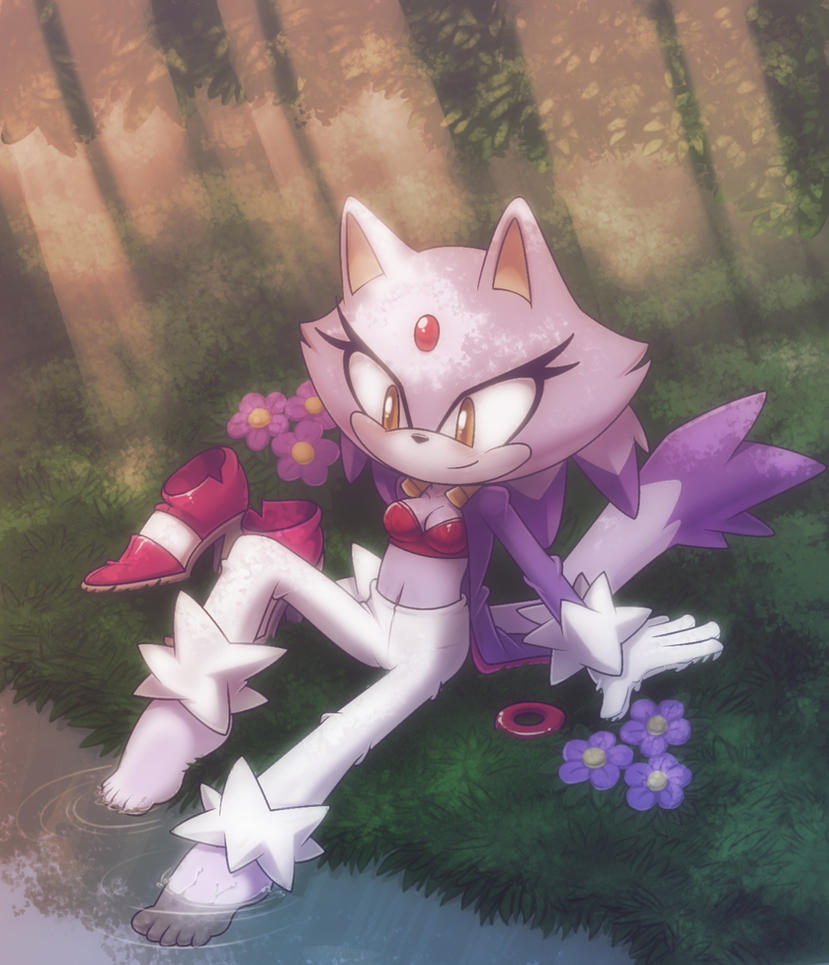 Blaze the cat +taking a rest+ by nancher