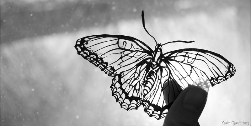 Butterfly by DeathOfParadise