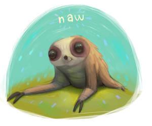 Naw sloth