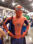 Spiderman by Lisa22882